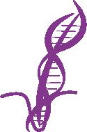 Representação DNA